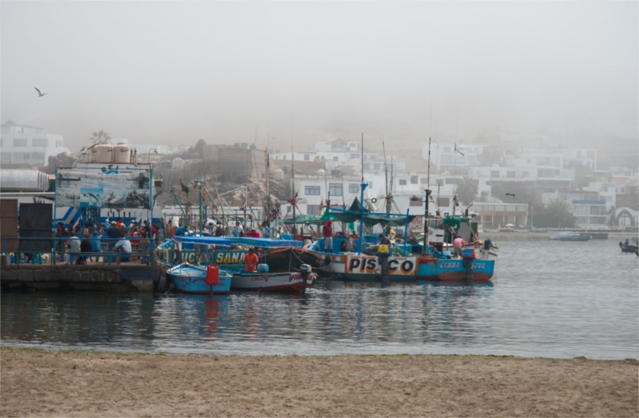 's morgens in de haven van Pucusana