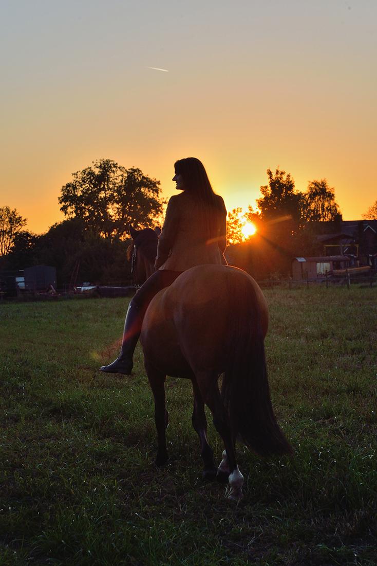 Zonsondergang met paard en amazone.