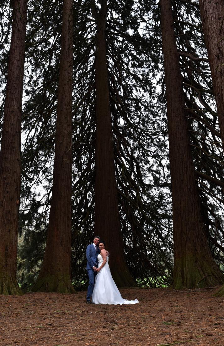 Bruidspaar bij Landgoed Rhederoord bij de Sequoia bomen.