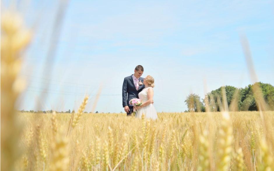 Spontane bruidsfoto's, bruidspaar in een veld met koren tijdens hun trouwreportage in Nederland.