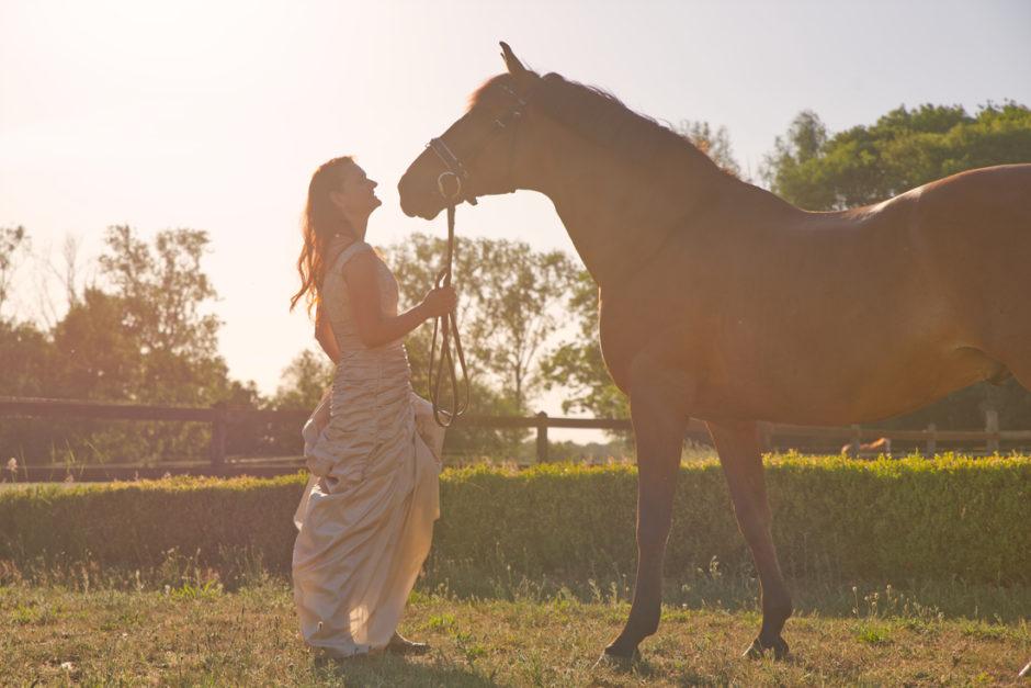 Paarden fotoshoot in Roermond met de avondzon.